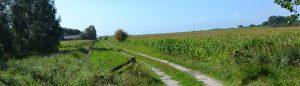 omgeving Lemmer